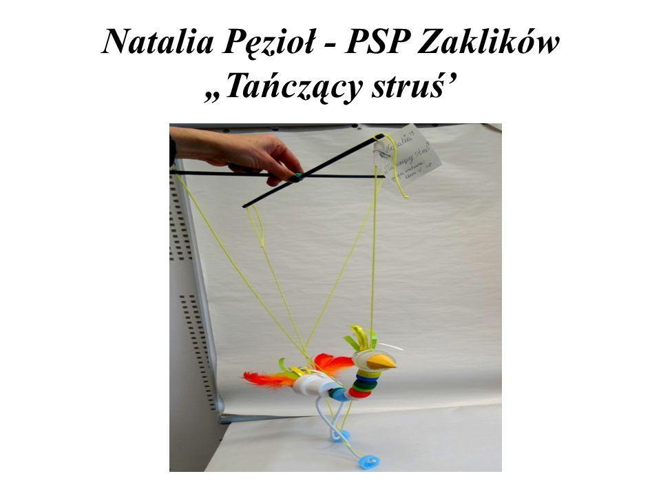 """Agnieszka Dwojak - PSP nr 12 """"Kubuś Puchatek"""