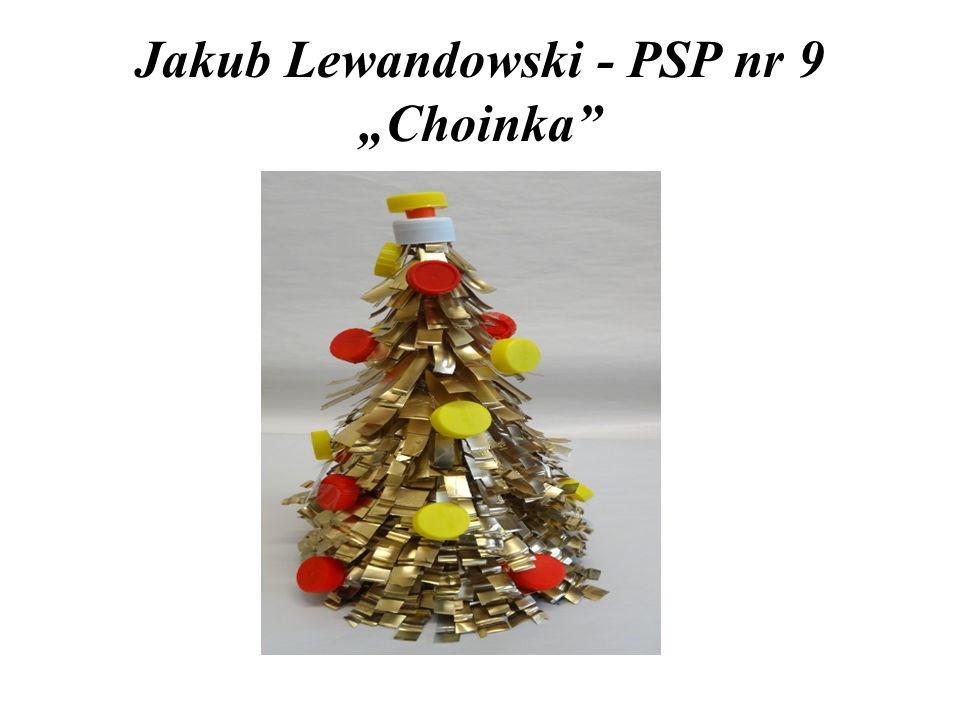 """Jakub Lewandowski - PSP nr 9 """"Choinka"""