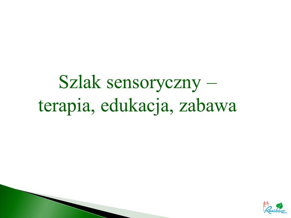 Szlak sensoryczny – terapia, edukacja, zabawa