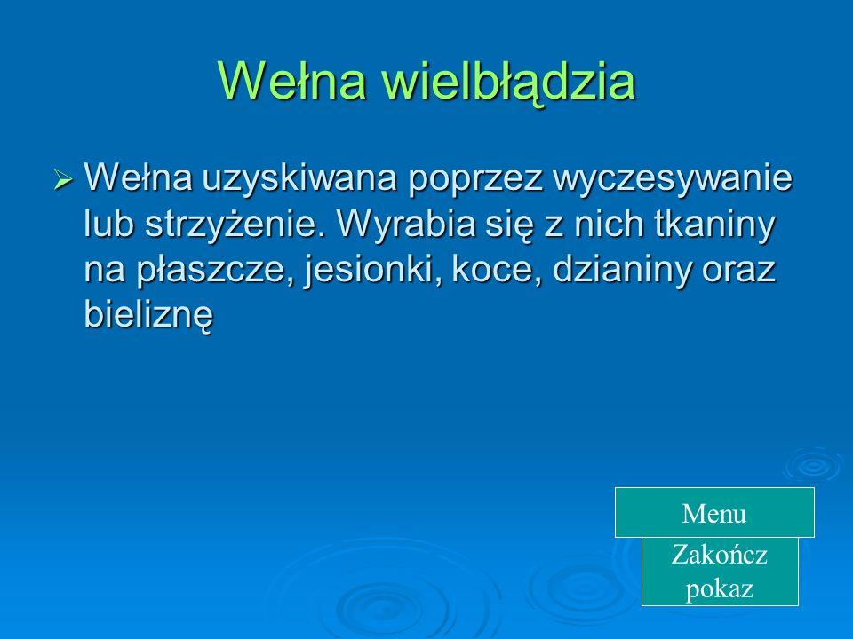 Koza kaszmirska  Wełna ma piękny połysk i jest niezwykle delikatna. Używana do produkcji bardzo cienkich i delikatnych tkanin. Zakończ pokaz Menu