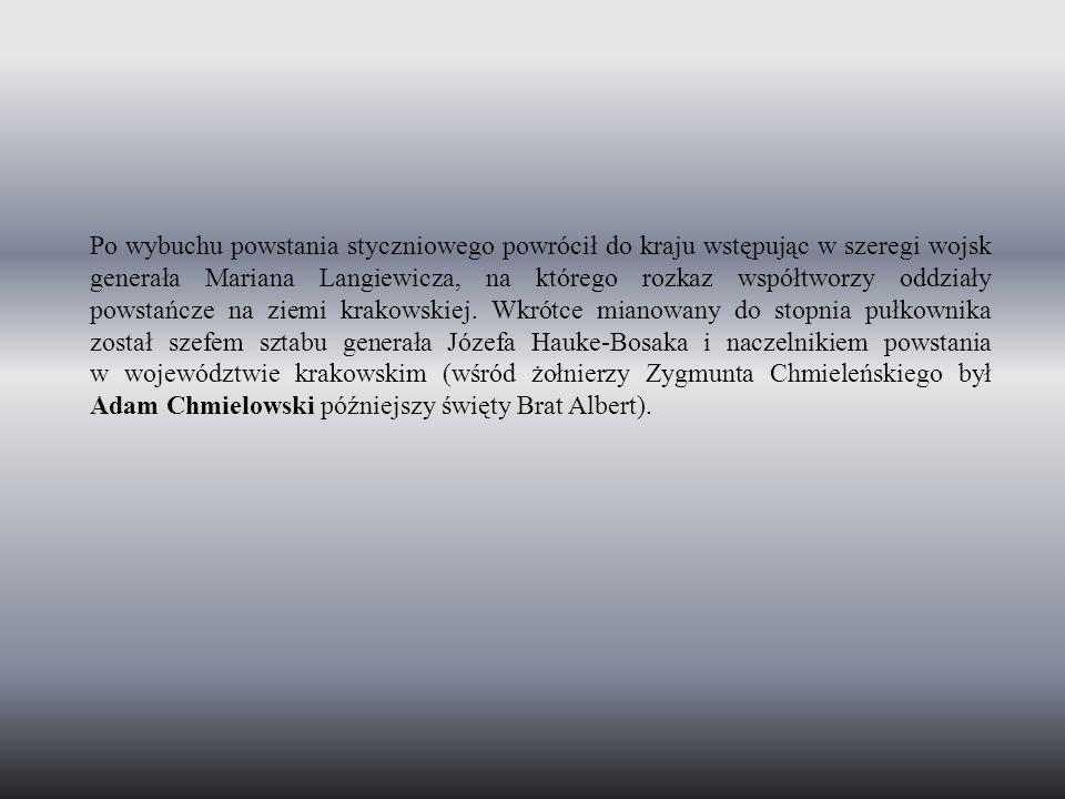 Po wybuchu powstania styczniowego powrócił do kraju wstępując w szeregi wojsk generała Mariana Langiewicza, na którego rozkaz współtworzy oddziały powstańcze na ziemi krakowskiej.
