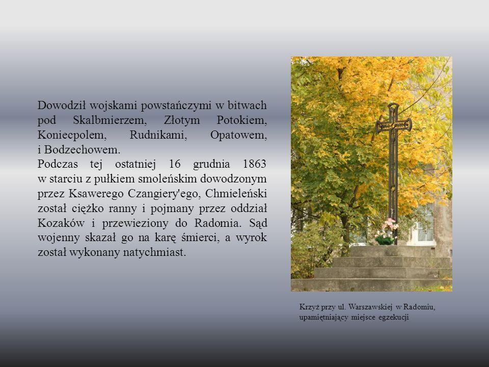 Dowodził wojskami powstańczymi w bitwach pod Skalbmierzem, Złotym Potokiem, Koniecpolem, Rudnikami, Opatowem, i Bodzechowem.