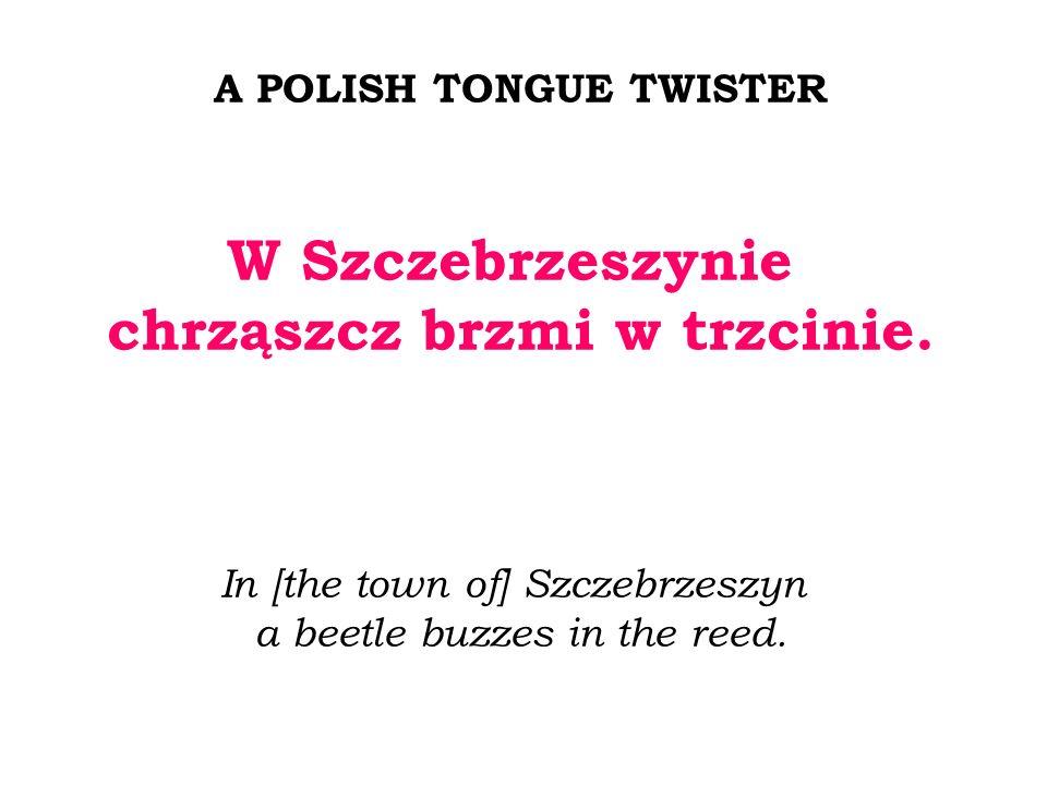 A POLISH TONGUE TWISTER W Szczebrzeszynie chrząszcz brzmi w trzcinie. In [the town of] Szczebrzeszyn a beetle buzzes in the reed.