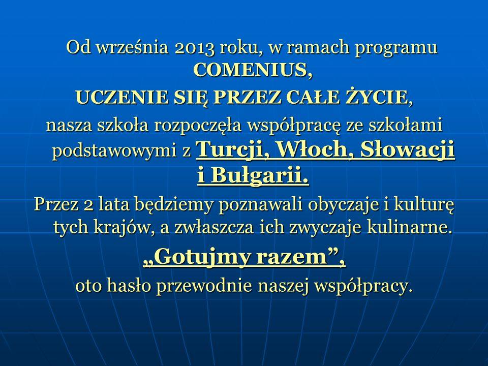 Od września 2013 roku, w ramach programu COMENIUS, Od września 2013 roku, w ramach programu COMENIUS, UCZENIE SIĘ PRZEZ CAŁE ŻYCIE, nasza szkoła rozpoczęła współpracę ze szkołami podstawowymi z Turcji, Włoch, Słowacji i Bułgarii.