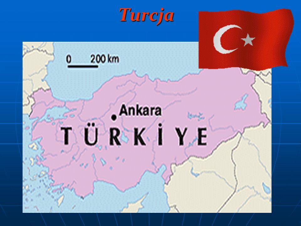 Ustrój polityczny: republika Stolica: Ankara Powierzchnia: 780 580 km² Liczba mieszkańców: 71,5 mln Waluta: lira turecka