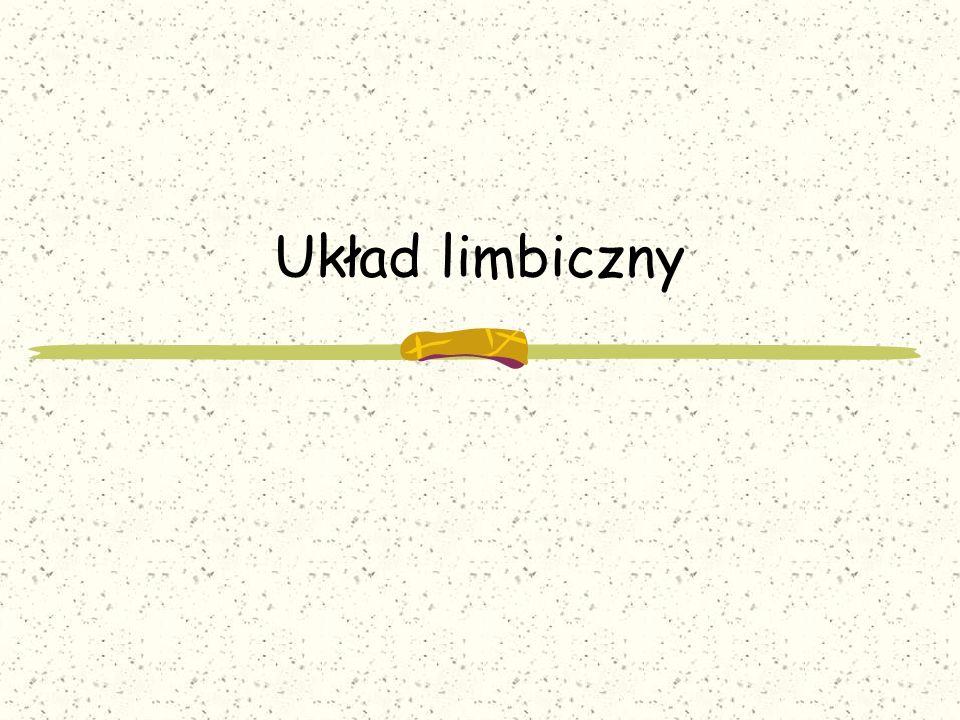 Układ limbiczny