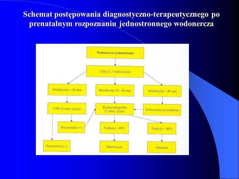 Schemat postępowania diagnostyczno-terapeutycznego po prenatalnym rozpoznaniu jednostronnego wodonercza
