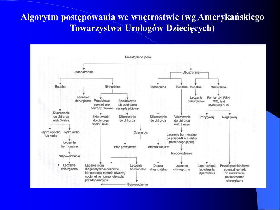 Algorytm postępowania we wnętrostwie (wg Amerykańskiego Towarzystwa Urologów Dziecięcych)