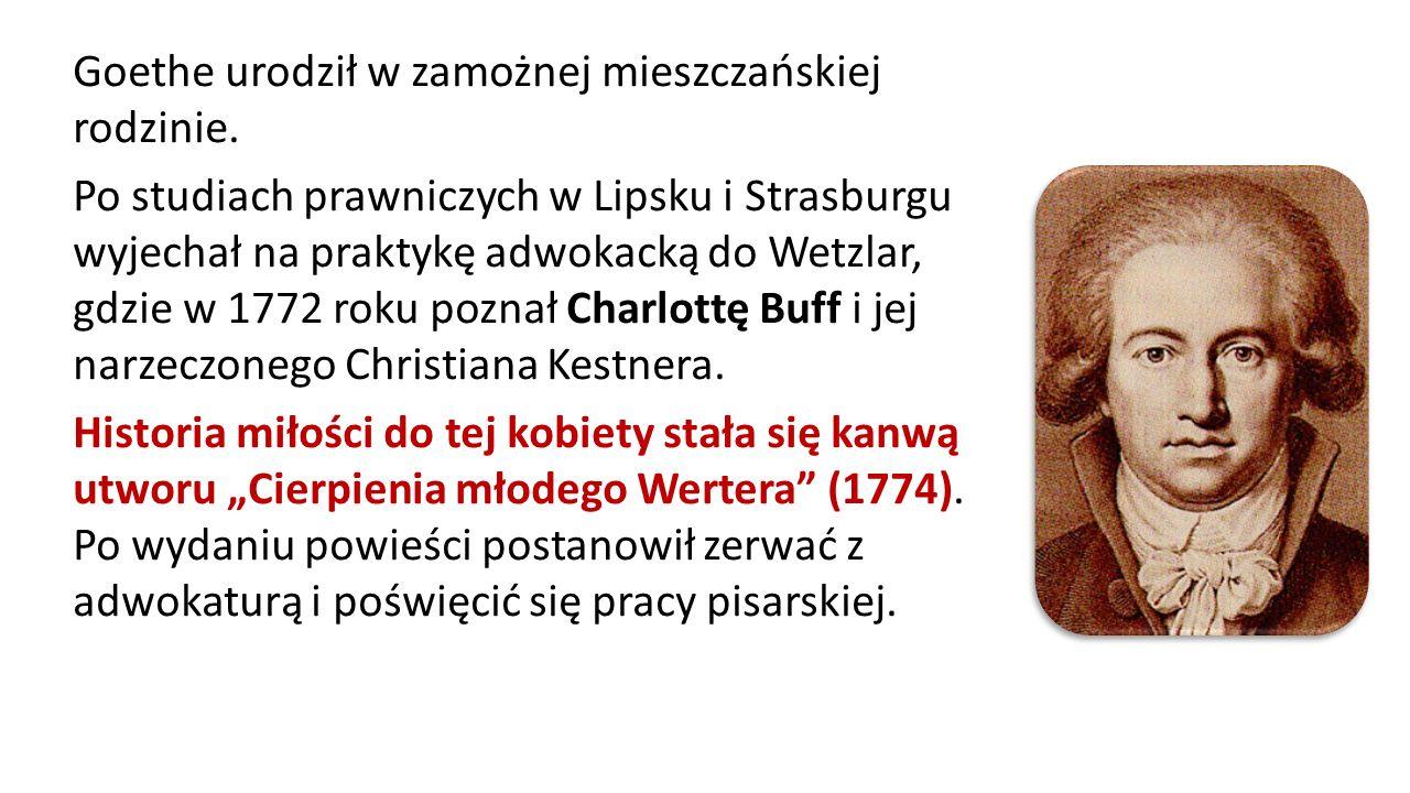 Goethe urodził w zamożnej mieszczańskiej rodzinie. Po studiach prawniczych w Lipsku i Strasburgu wyjechał na praktykę adwokacką do Wetzlar, gdzie w 17
