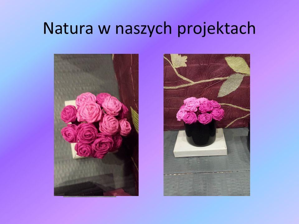 Natura w naszych projektach