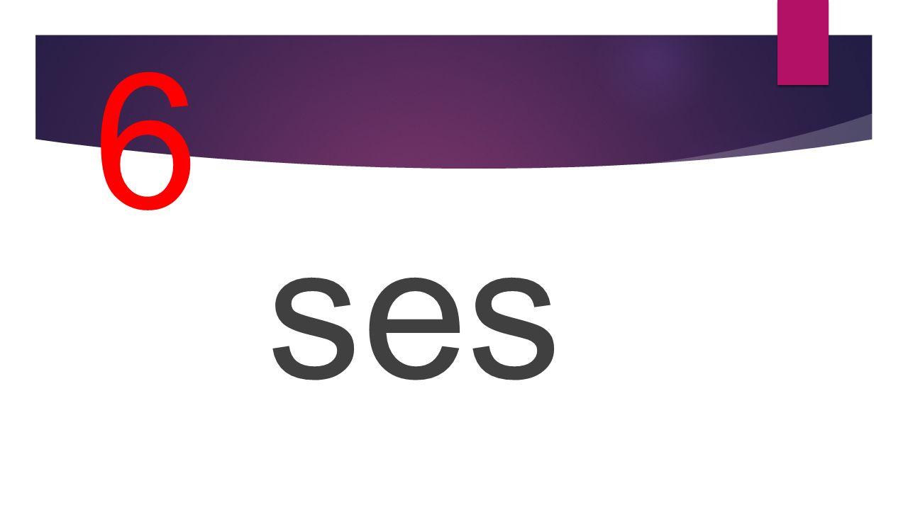 6 ses