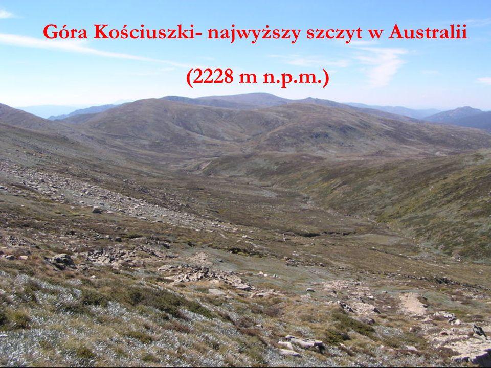 Góra Kościuszki Góra Kościuszki- najwyższy szczyt w Australii (2228 m n.p.m.)