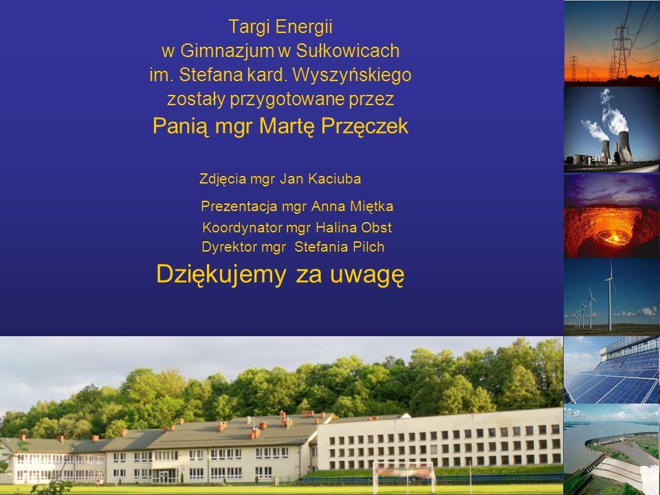 Targi Energii w Gimnazjum w Sułkowicach im. Stefana kard.