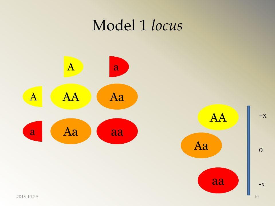 Model 1 locus AA Aa aa AAaa AAAa aaAa +x -x 0 2015-10-2910
