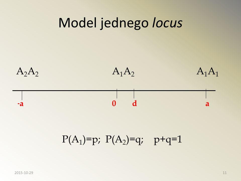 Model jednego locus A 2 A 2 A 1 A 2 A 1 A 1 - a 0 d a P(A 1 )=p; P(A 2 )=q; p+q=1 2015-10-2911