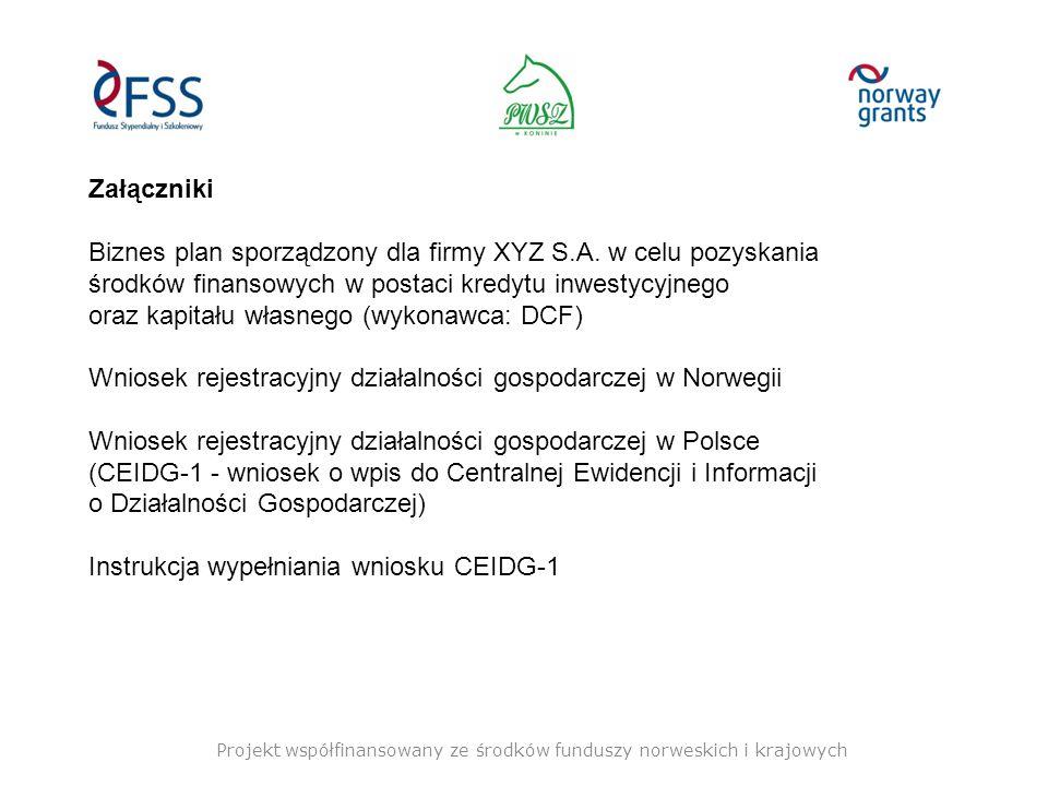 Projekt współfinansowany ze środków funduszy norweskich i krajowych Załączniki Biznes plan sporządzony dla firmy XYZ S.A.
