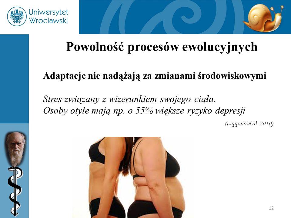 12 Powolność procesów ewolucyjnych Adaptacje nie nadążają za zmianami środowiskowymi Stres związany z wizerunkiem swojego ciała. Osoby otyłe mają np.