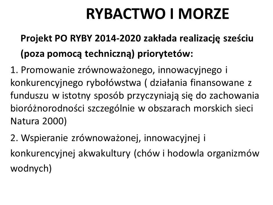 RYBACTWO I MORZE Projekt PO RYBY 2014-2020 zakłada realizację sześciu (poza pomocą techniczną) priorytetów: 1. Promowanie zrównoważonego, innowacyjneg