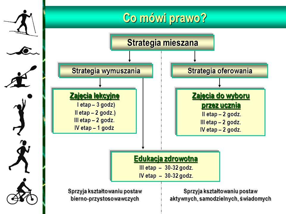 Strategia mieszana Strategia wymuszania Strategia oferowania Zajęcia lekcyjne I etap – 3 godz) II etap – 2 godz.) III etap – 2 godz.