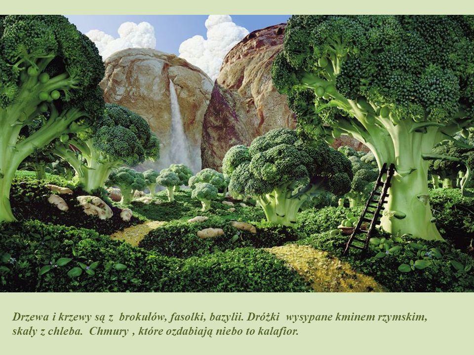Piękna tęcza – prawdopodobnie z makaronu, drzewa z pietruszki i kartofli.