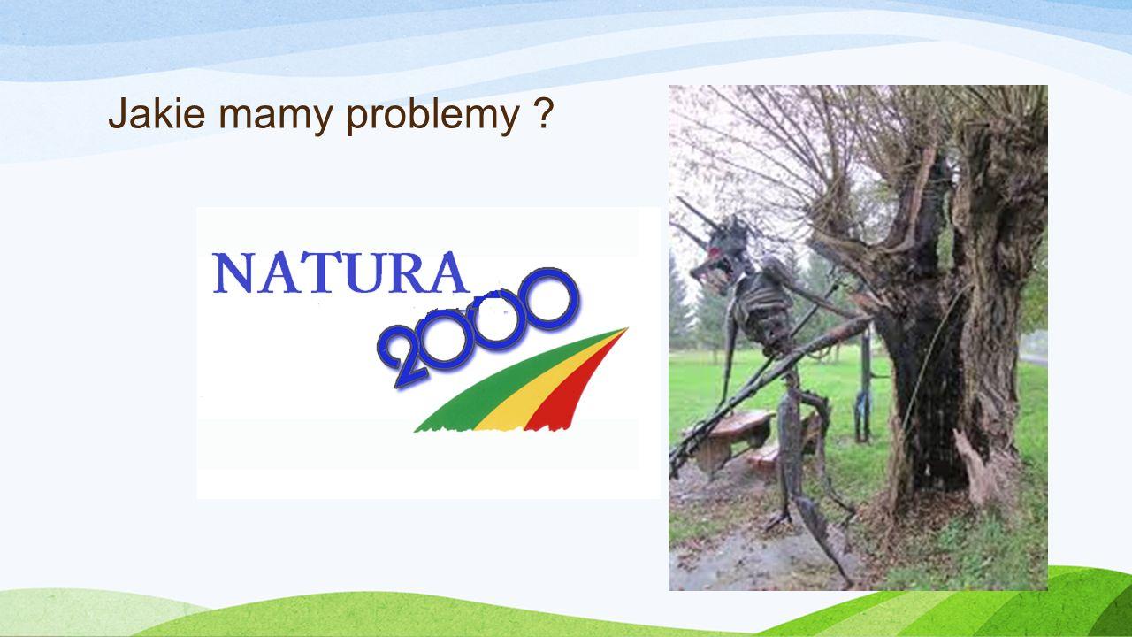 Jakie mamy problemy ?