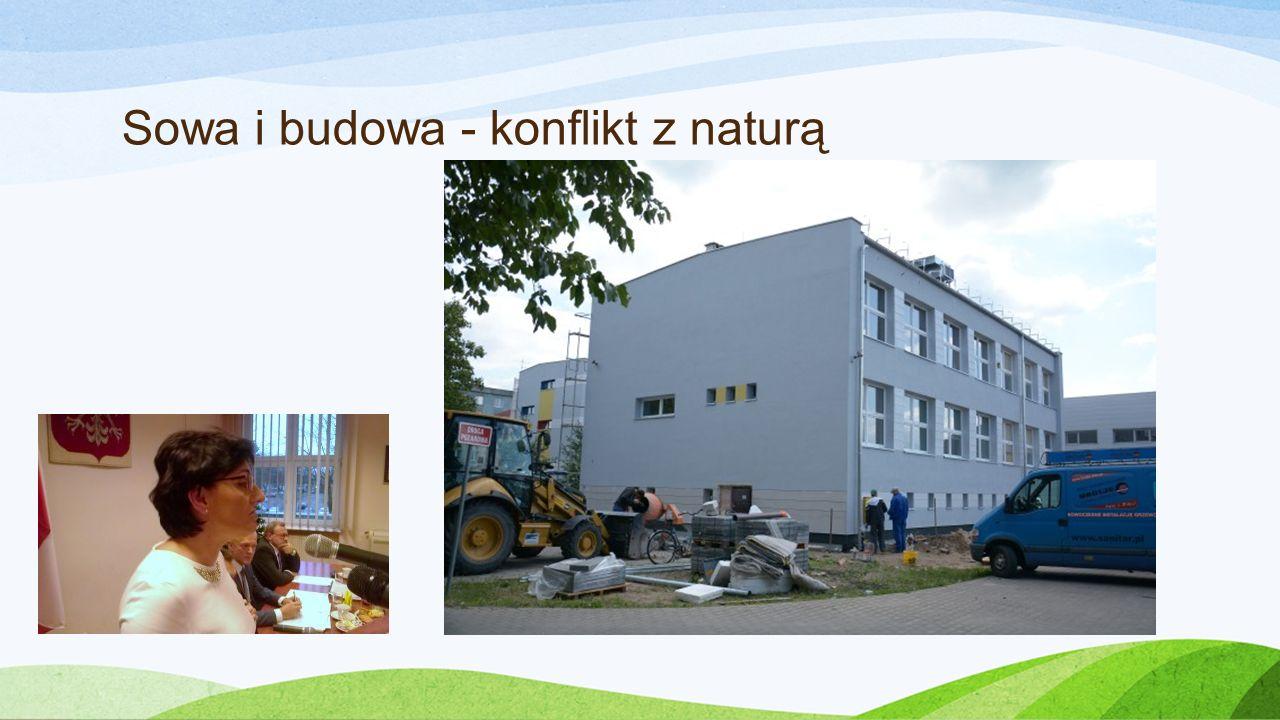 Sowa i budowa - konflikt z naturą