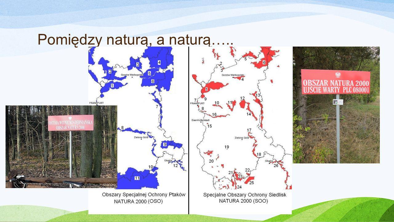 Pomiędzy naturą, a naturą…..