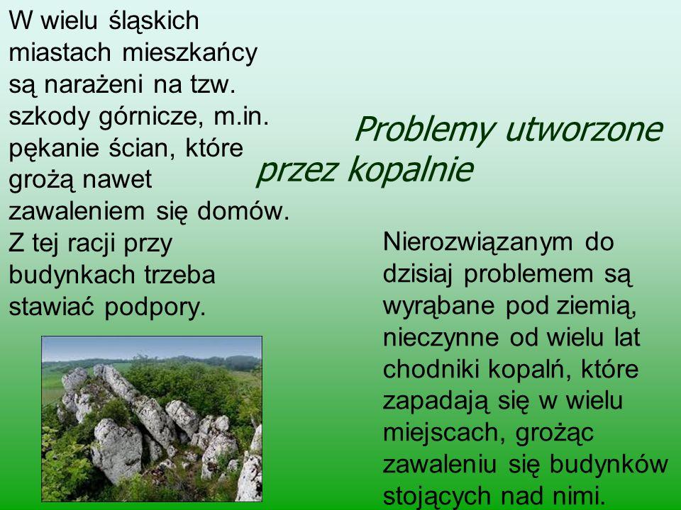 Problemy utworzone przez kopalnie W wielu śląskich miastach mieszkańcy są narażeni na tzw. szkody górnicze, m.in. pękanie ścian, które grożą nawet zaw