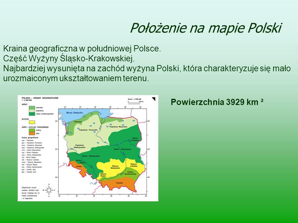 Położenie na mapie Polski Kraina geograficzna w południowej Polsce. Część Wyżyny Śląsko-Krakowskiej. Najbardziej wysunięta na zachód wyżyna Polski, kt