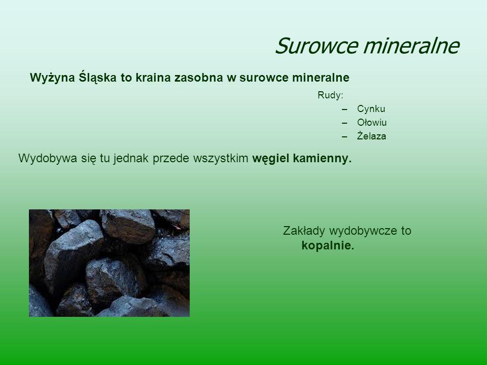 Surowce mineralne Wyżyna Śląska to kraina zasobna w surowce mineralne Rudy: –Cynku –Ołowiu –Żelaza Zakłady wydobywcze to kopalnie. Wydobywa się tu jed