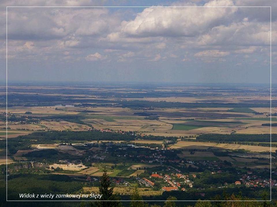 Szyb w kopalni Lubin Główny Lubin leży w centrum Legnicko-Głogowskiego Okręgu Miedziowego, swoja siedzibę ma KGHM Polska Miedź, jeden z czołowych producentów miedzi i srebra