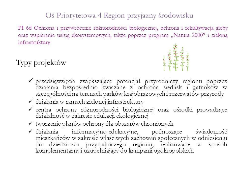 Oś Priorytetowa 4 Region przyjazny środowisku Typy projektów przedsięwzięcia zwiększające potencjał przyrodniczy regionu poprzez działania bezpośredni