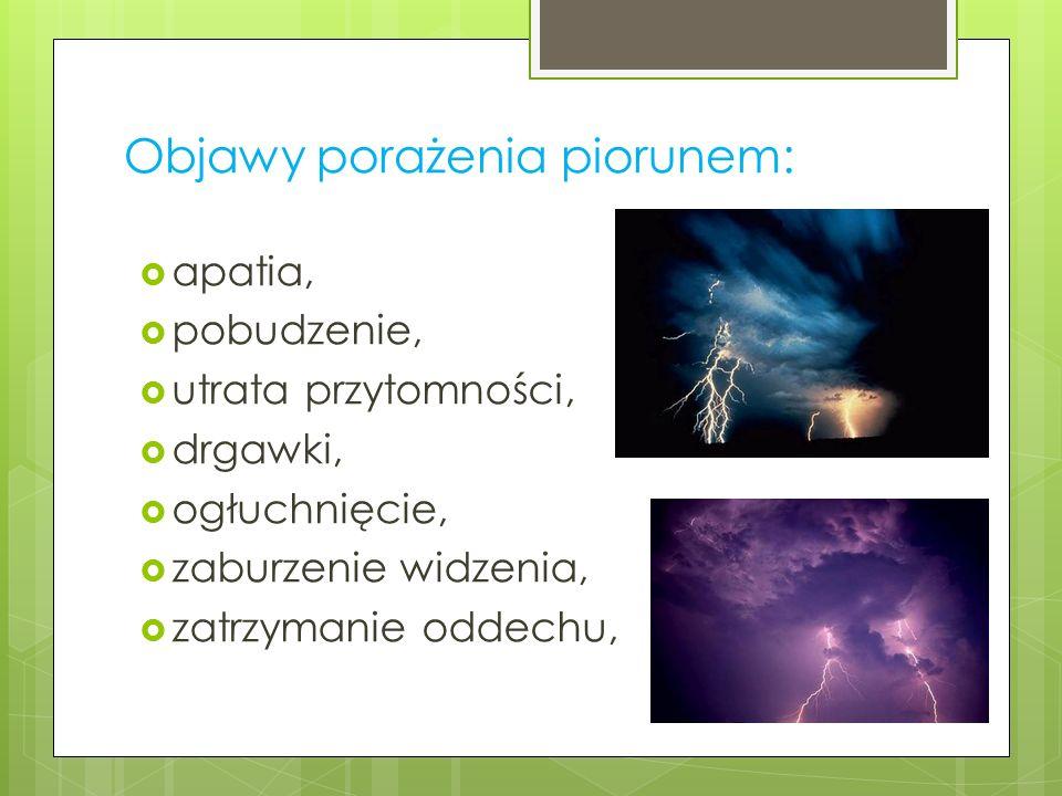 Objawy porażenia piorunem:  apatia,  pobudzenie,  utrata przytomności,  drgawki,  ogłuchnięcie,  zaburzenie widzenia,  zatrzymanie oddechu,