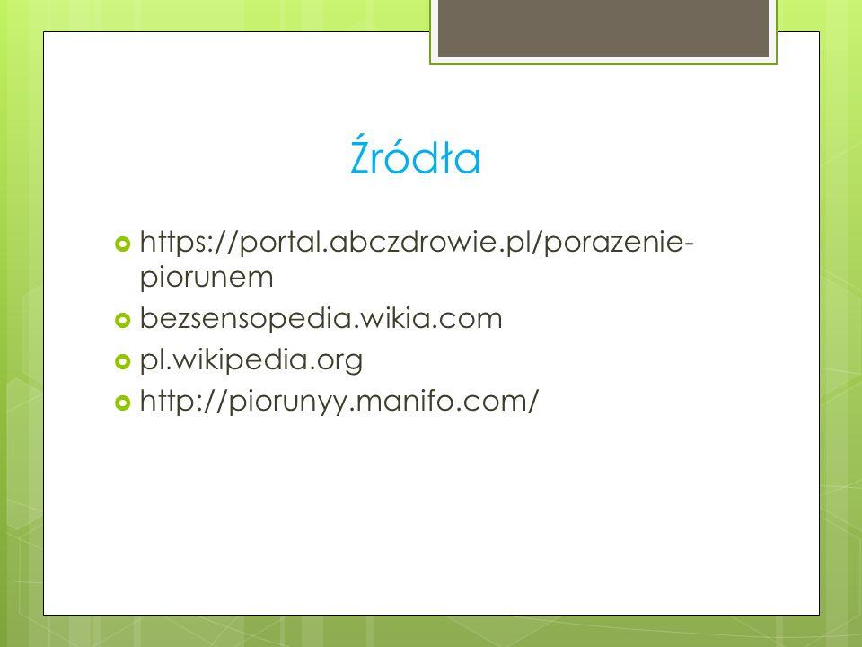 Źródła  https://portal.abczdrowie.pl/porazenie- piorunem  bezsensopedia.wikia.com  pl.wikipedia.org  http://piorunyy.manifo.com/
