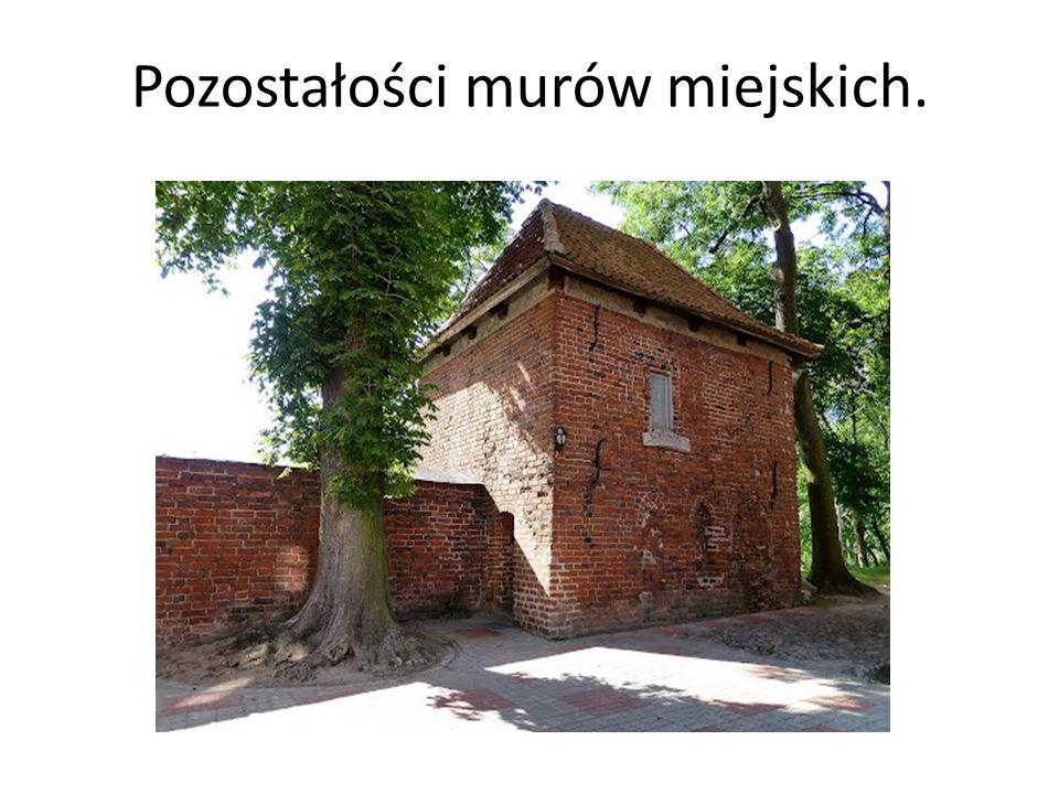 Pozostałości murów miejskich.