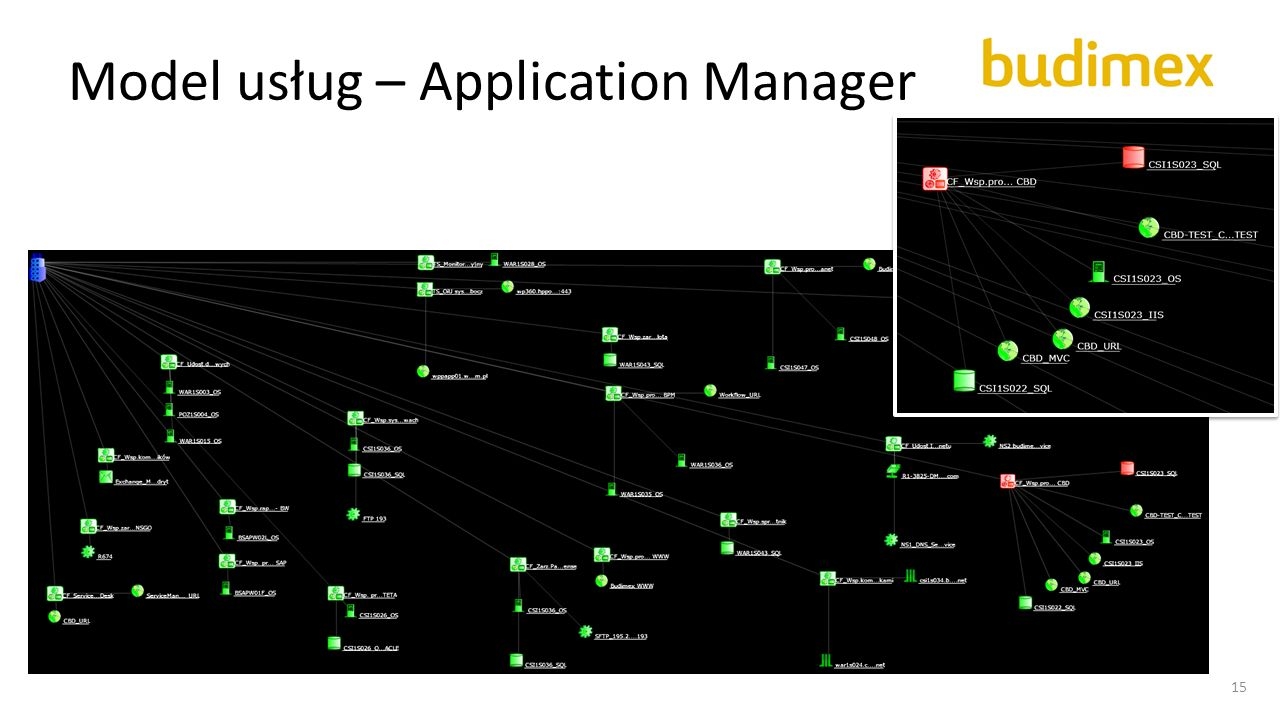 Model usług – Application Manager 15