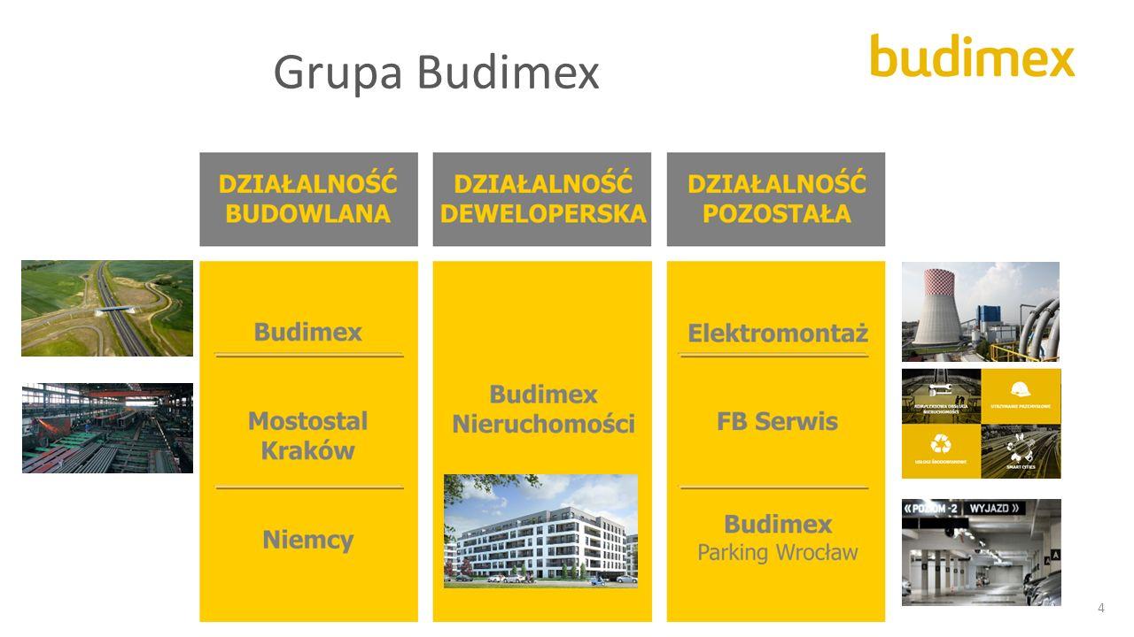 Grupa Budimex 4