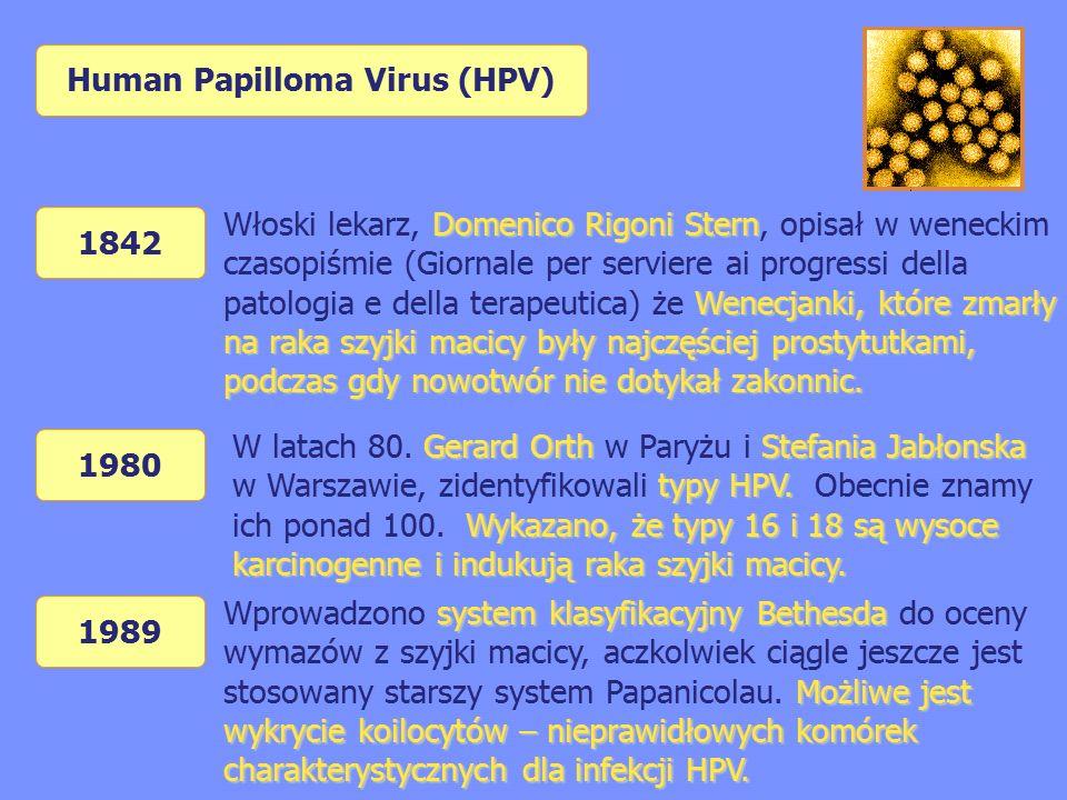 Human Papilloma Virus (HPV) 1842 Domenico Rigoni Stern Wenecjanki, które zmarły na raka szyjki macicy były najczęściej prostytutkami, podczas gdy nowotwór nie dotykał zakonnic.