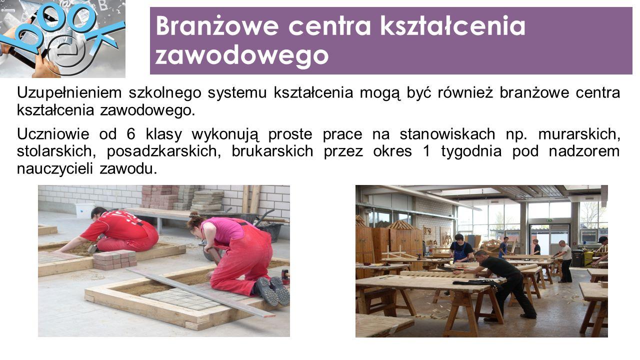Uzupełnieniem szkolnego systemu kształcenia mogą być również branżowe centra kształcenia zawodowego.