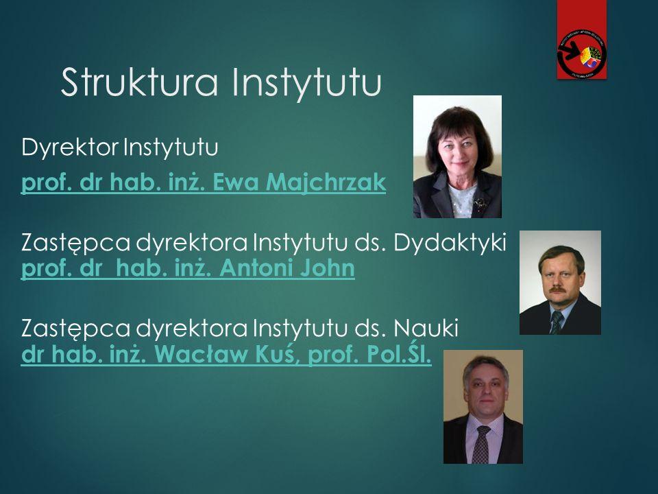 Struktura Instytutu Zakład Mechaniki Komputerowej i Informatyki Stosowanej Kierownik Zakładu dr hab.