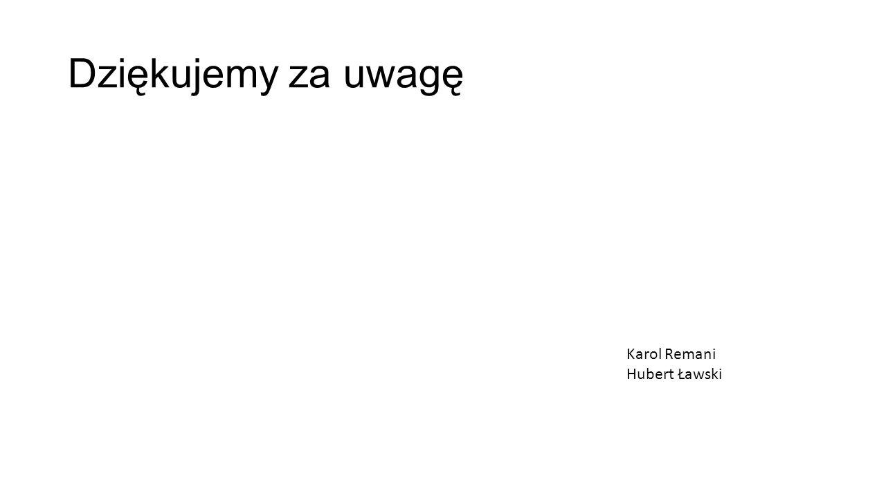 Dziękujemy za uwagę Karol Remani Hubert Ławski