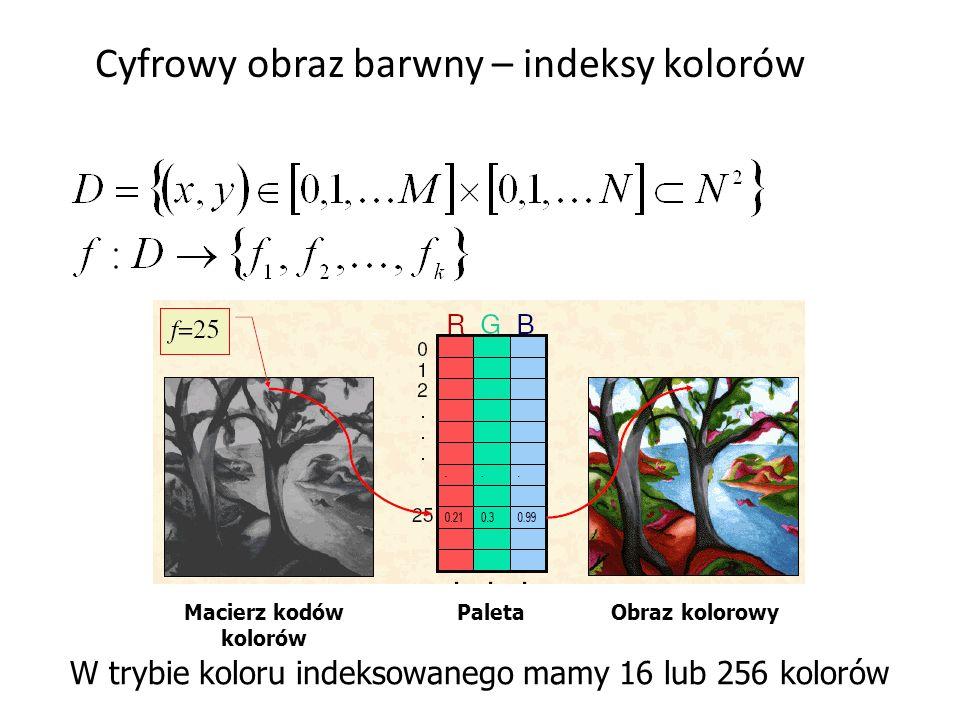 Cyfrowy obraz barwny – indeksy kolorów W trybie koloru indeksowanego mamy 16 lub 256 kolorów Macierz kodów kolorów PaletaObraz kolorowy