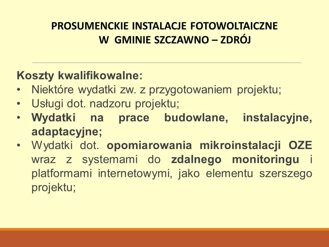 Koszty kwalifikowalne: Niektóre wydatki zw. z przygotowaniem projektu; Usługi dot.