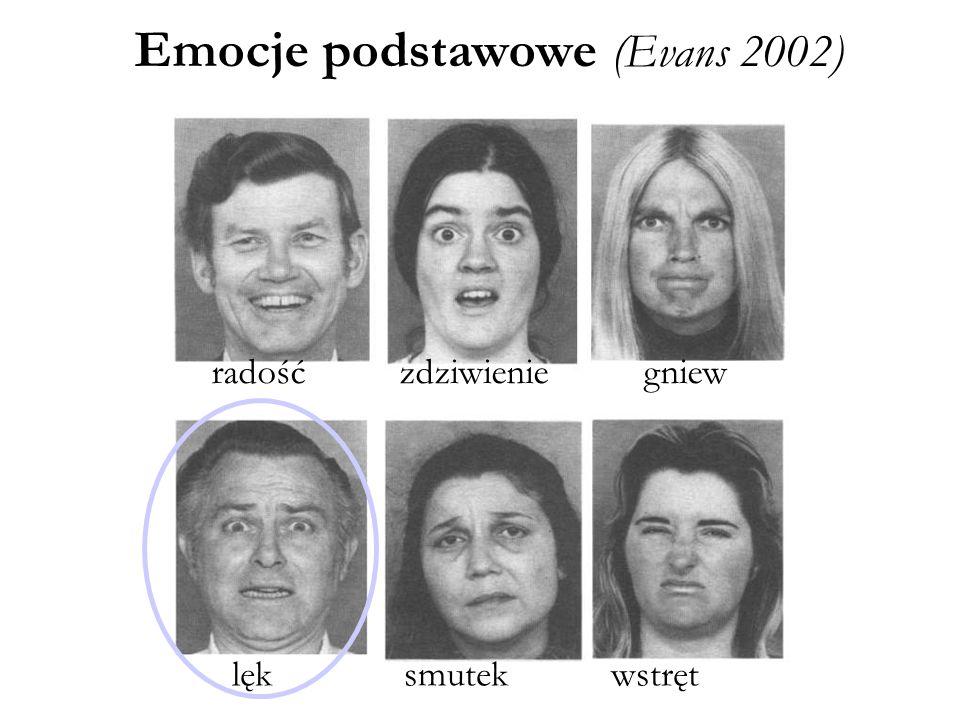 lęk smutek wstręt radość zdziwienie gniew Emocje podstawowe (Evans 2002)