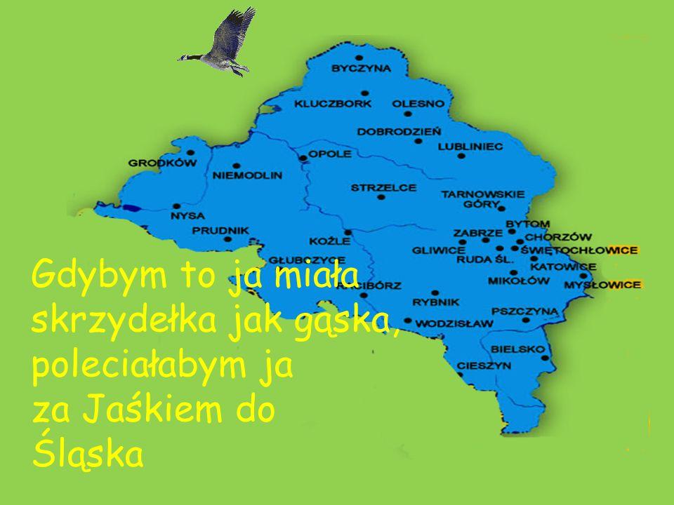 Gdybym to ja miała skrzydełka jak gąska, poleciałabym ja za Jaśkiem do Śląska
