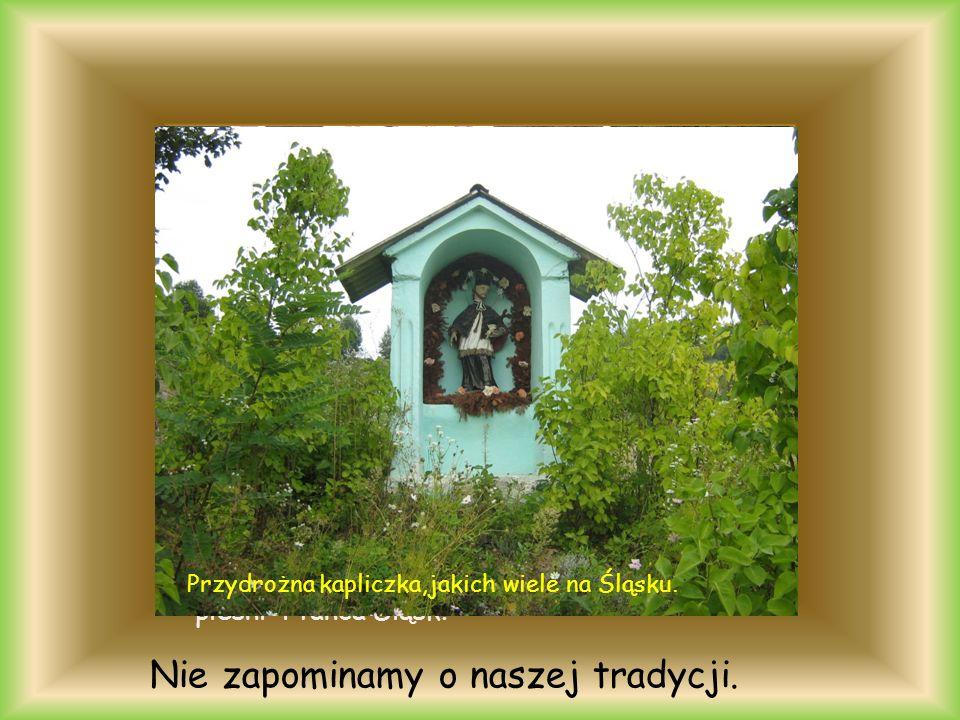 Góra Św.Anny Pałac w Brynku Pałac w Pawlowicach i nasze zabytki. zameczek w Promnicach
