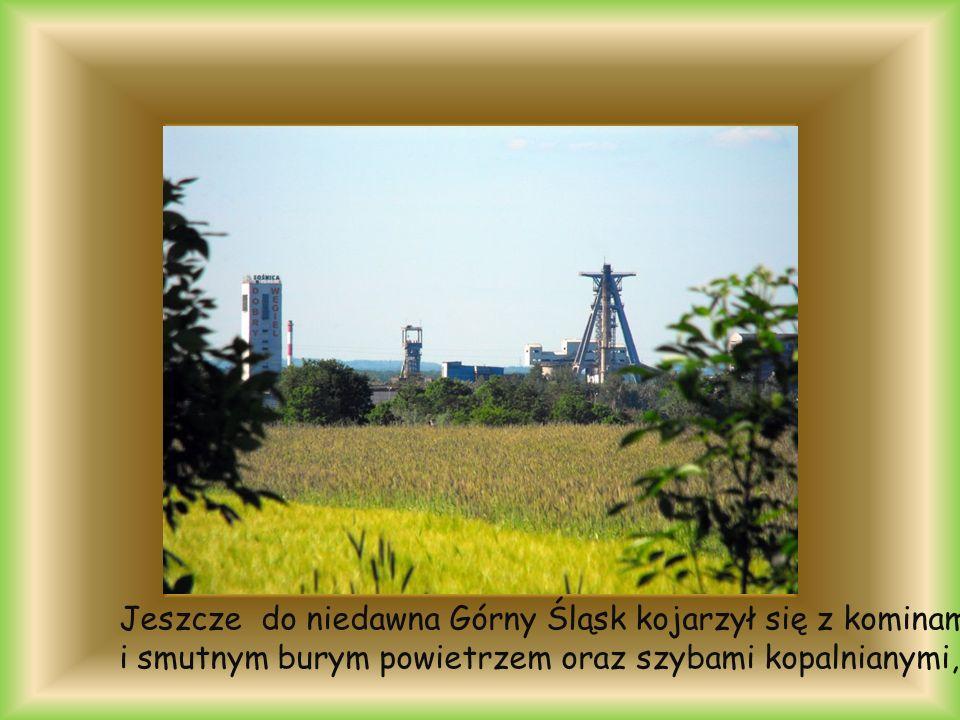 Jeszcze do niedawna Górny Śląsk kojarzył się z kominami i smutnym burym powietrzem oraz szybami kopalnianymi,