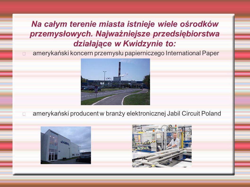 Na całym terenie miasta istnieje wiele ośrodków przemysłowych. Najważniejsze przedsiębiorstwa działające w Kwidzynie to: amerykański koncern przemysłu
