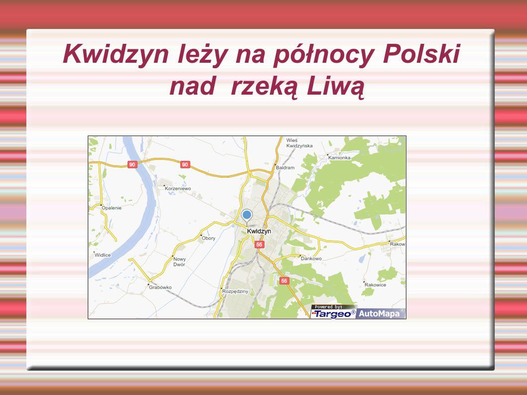 Na terenie Kwidzyna istnieje rezerwat przyrody Kwidzyńskie Ostnice.