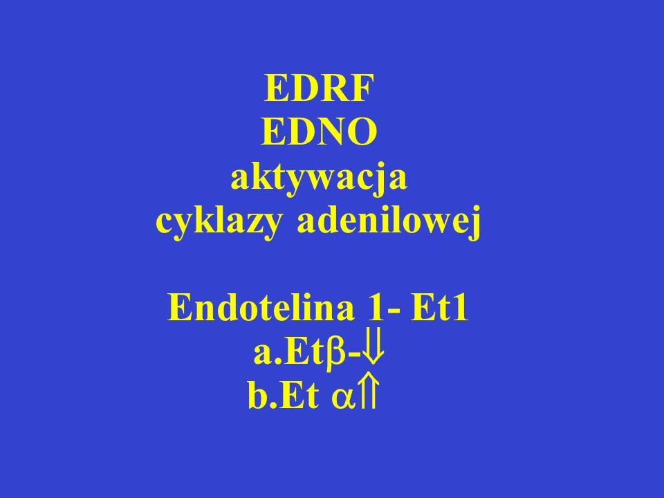 EDRF EDNO aktywacja cyklazy adenilowej Endotelina 1- Et1 a.Et  -  b.Et 